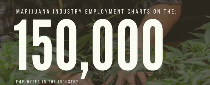 cannabis business employment