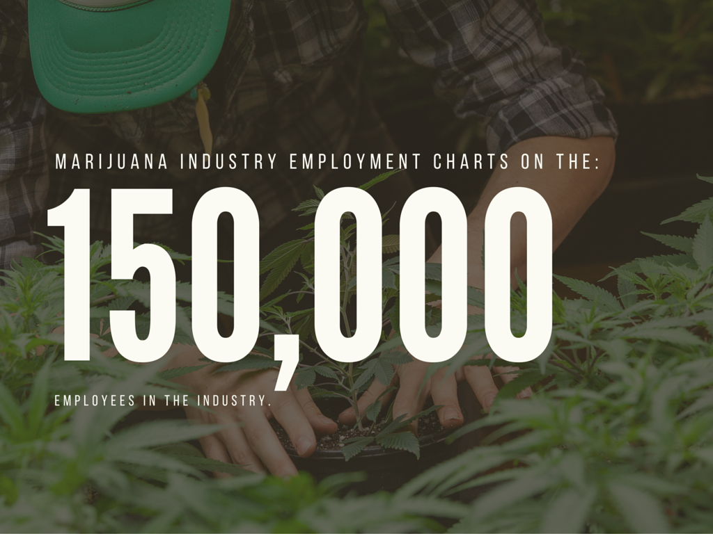 The Marijuana Industry Workforce Is Massive